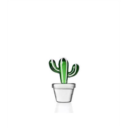 Ichendorf Desert plants Fermacarte cactus verde